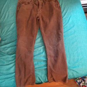 Brown Corduroys slim Straight fit